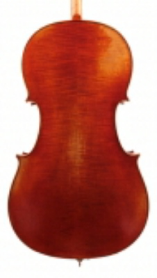 ANV Inst 25 Jay Haide cello