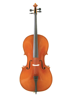 ANV Inst 19 Westbury Cello